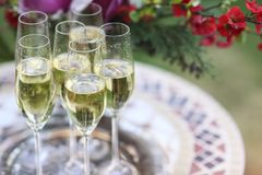 Champagne glasses on silver tray Royalty Free Stock Photos