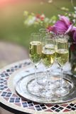Champagne glasses on silver tray Royalty Free Stock Images
