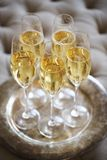 Champagne glasses on silver tray. Party concept. Champagne glasses on silver tray. Party and holiday celebration concept royalty free stock photo