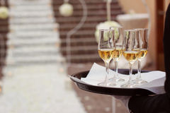 4 champagne glasses. Waiter holding 4 champagne glasses on a tray Stock Photos