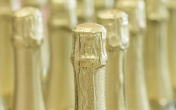 Champagne gold bottle necks and top caps at standing the light background in stock. Stock Images