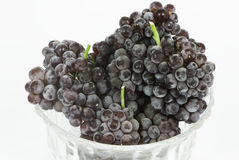 Champagne grapes Royalty Free Stock Photo
