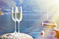 Champagne and grapes Stock Photography