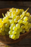 Champagne Grapes organique vert cru Photographie stock