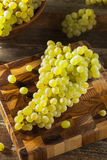 Champagne Grapes organique vert cru Images stock