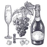Champagne and grapes set. Vintage hand drawing on subject of alcohol. Bottles with champagne, grapes, wine glass with drink, ice slices and corkscrew. Isolated Stock Photos
