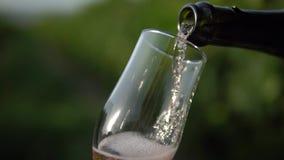Champagne-het gieten in het glas in wijngaard stock videobeelden