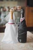 Champagne i en dräkt 1019 Royaltyfri Fotografi