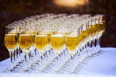 Champagne i exponeringsglas Arkivfoton