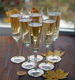 Champagne i exponeringsglaset royaltyfri bild
