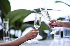 Champagne i härligt exponeringsglas Möte i en stadsrestaurang eller kafé Houseplants near fönstret, dagsljus Arkivbild