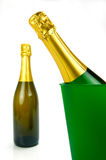 Champagne On Ice Royalty Free Stock Photo