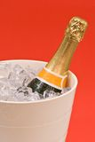 Champagne On Ice royalty free stock image