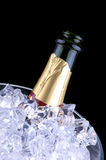 Champagne in Ice Bucket Stock Photo