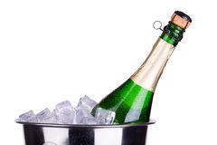 Champagne ice bucket Stock Photography
