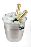 Champagne with ice cooler Royalty Free Stock Images