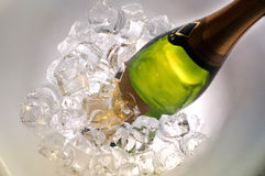 Champagne. With ice for party Royalty Free Stock Images