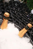 Champagne on ice Stock Images