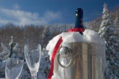Champagne im Schnee Lizenzfreie Stockfotos
