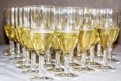 champagne inramninga exponeringsglas som skjutas horisontal Arkivfoton