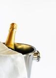 Champagne ist betriebsbereit! Stockbilder