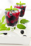 Champagne jelly with berries Royalty Free Stock Photography