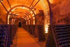 Champagne-Keller lizenzfreie stockbilder