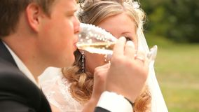 Champagne And Kiss stock footage