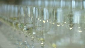 Champagne. many champagne Flutes with Sparkling Champagne. Over new year party Background stock footage