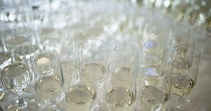 New Year Champagne. Champagne. many champagne Flutes with Sparkling Champagne over new year party Background stock footage