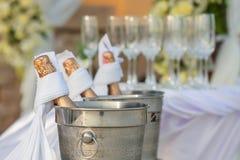 Champagne na cubeta de gelo Fotos de Stock