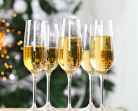 Champagne near the Christmas tree Stock Image