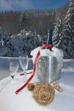 Champagne in neve Immagini Stock