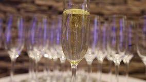 Champagne nos vidros, um vidro do champanhe, projeto do banquete, close-up do champanhe, banquet o interior, dentro filme
