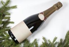 Champagne och julgran - julbakgrund Royaltyfri Bild