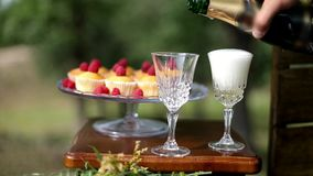 Champagne på bröllopet lager videofilmer