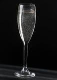 Champagne på svart bakgrund Royaltyfria Foton