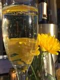 Champagne på uteplatsen Arkivbilder