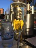 Champagne på uteplatsen Royaltyfria Foton