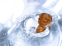 Champagne plash in a bowl of water. Royalty Free Stock Image