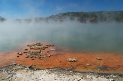 Champagne pool Royalty Free Stock Photos