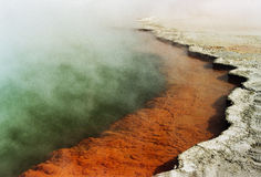 Champagne Pool Image stock