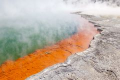 Champagne pool Stock Image
