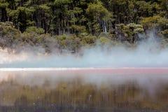 Champagne Pool nella riserva termica di Waiotapu, il Distretto di Rotorua, Nuova Zelanda Fotografie Stock Libere da Diritti