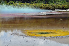 Champagne Pool Wai-O-Tapu Rotorua New Zealand Royalty Free Stock Image