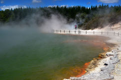 Champagne Pool, Wai-O-Tapu, Rotorua, New Zealand Royalty Free Stock Photography