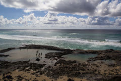 Champagne Pools. The Champagne Pools, Fraser Island, Australia Royalty Free Stock Photography