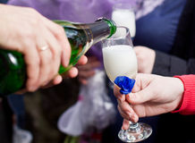 Champagne poured in to the glass Royalty Free Stock Photography