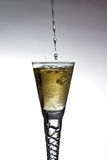 Champagne pouring into glass Royalty Free Stock Photos