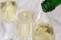 Champagne pouring into a glass Royalty Free Stock Photo